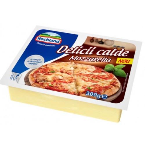 Hochland Mozzarella Bloc 300g *10